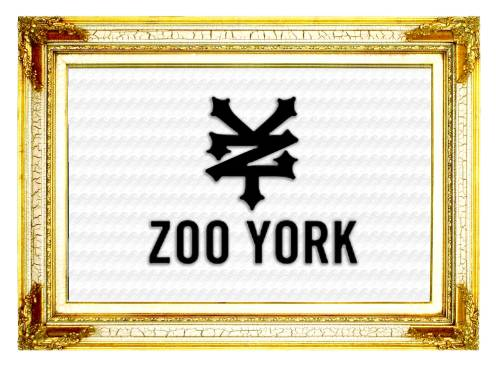Zoo York Skateboard-Plunder-Category Page Header