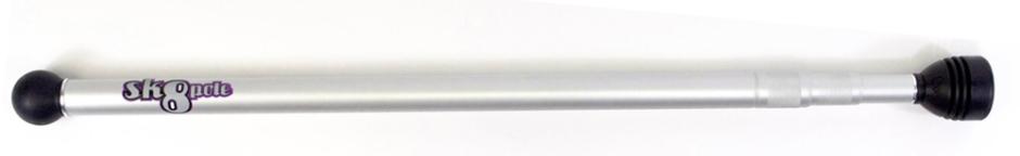 Skate Pole Silver