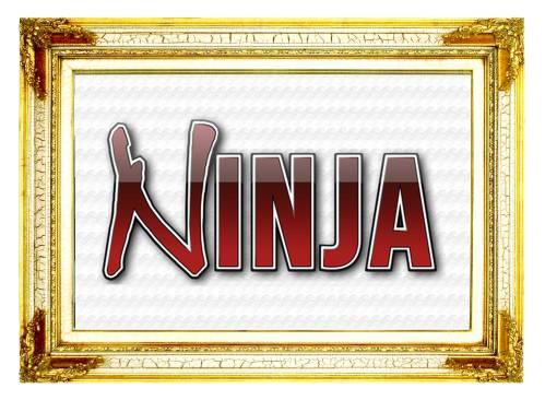 Ninja Scuba Regulators