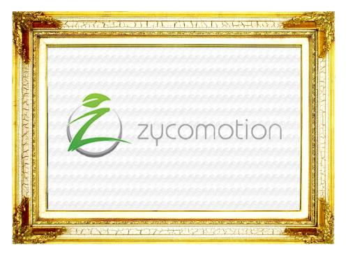 Zycom Scooter Plunder Category Page Header Button